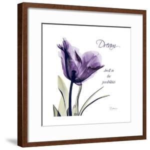 Tulip Dream by Albert Koetsier