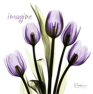 Tulip in Purple, Imagine by Albert Koetsier