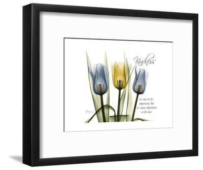 Tulip Kindness