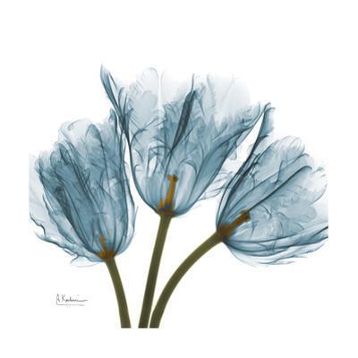 Tulips Blue by Albert Koetsier
