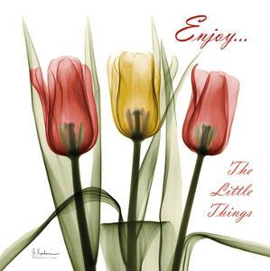 Tulips Enjoy The Little Things by Albert Koetsier