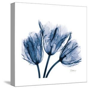 Tulips Indigo by Albert Koetsier