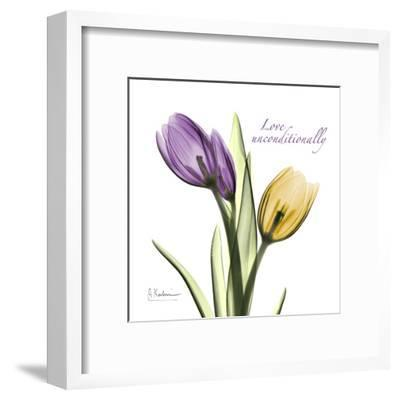 Tulips Love Unconditionally