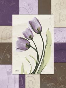 Tulips Wineberry by Albert Koetsier