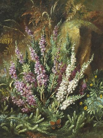 Still Life of Heather and Butterflies