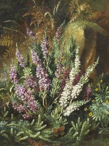 Still Life of Heather and Butterflies by Albert Lucas