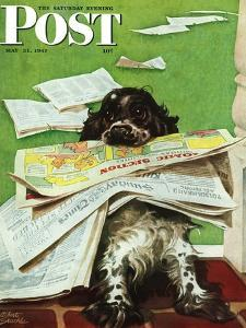 """Butch and the Sunday Paper,"" Saturday Evening Post Cover, May 31, 1947 by Albert Staehle"