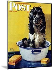 """""""Butch Gets a Bath,"""" Saturday Evening Post Cover, May 11, 1946 by Albert Staehle"""