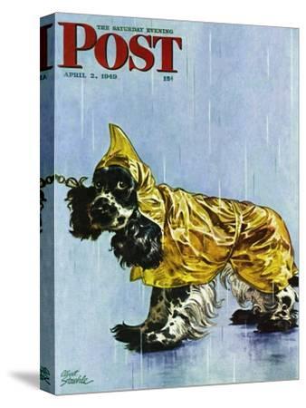 """""""Butch in Raingear,"""" Saturday Evening Post Cover, April 2, 1949"""