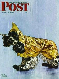 """""""Butch in Raingear,"""" Saturday Evening Post Cover, April 2, 1949 by Albert Staehle"""
