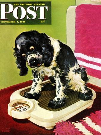 """""""Butch Weighs In,"""" Saturday Evening Post Cover, September 1, 1945"""