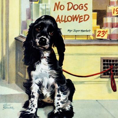 """""""No Dogs Allowed,"""" August 24, 1946"""