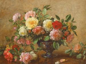 AB/110/2 All Beauty in a Summer Rose by Albert Williams