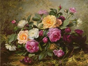 Full Blown Roses by Albert Williams