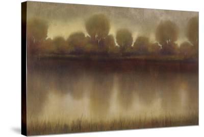 Marsh of the Warm Sunset