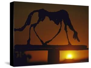 Dog by Alberto Giacometti