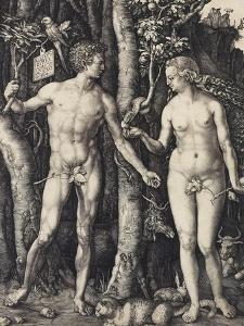 Adam and Eve, 1504 by Albrecht D?rer