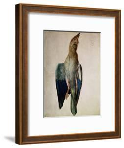 Blue Crow, 1512 by Albrecht D?rer