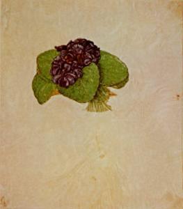 Bouquet of Violets by Albrecht D?rer