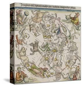 Map of the Northern Sky by Albrecht D?rer