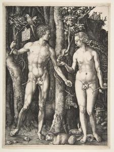 Adam and Eve, 1504 by Albrecht D?rer or Duerer
