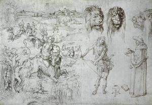 Rape of Europa, Lion's Heads, Archer, Sage, Skull, Drawing by Albrecht D?rer