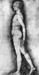Study of Male Nude Seen in Profile, British Museum, London by Albrecht D?rer