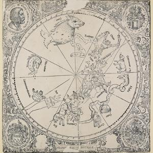 The Celestial Chart of the Southern Hemisphere by Albrecht D?rer