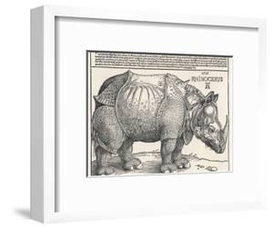 The Indian Rhinoceros is the Largest of the Asian Spiecies by Albrecht D?rer