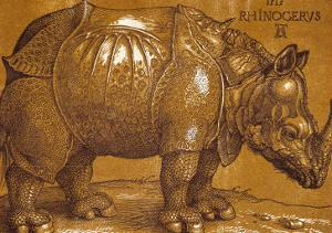 The Rhinoceros, 1515, Pen and Ink, Wash by Albrecht D?rer