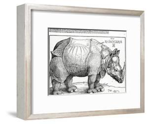 The Rhinoceros, 1515 (Woodcut) by Albrecht D?rer