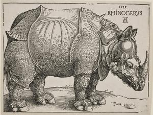 The Rhinoceros, 1515 by Albrecht D?rer
