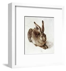 The Young Hare by Albrecht D?rer