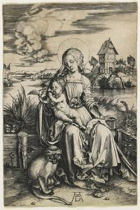 Virgin and Child with the Monkey, C. 1498 by Albrecht D?rer