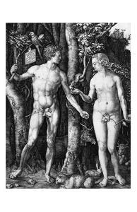 Adam and Eve, c.1504 by Albrecht Dürer