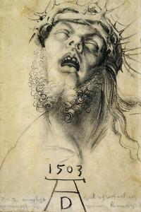 Head of the Dead Christ, 1503. Dramatic drawing of the dead Christ. by Albrecht Dürer