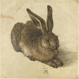 Lièvre couché, tourné vers la droite by Albrecht Dürer
