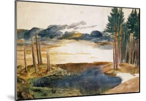 Pond in the Woods by Albrecht Dürer
