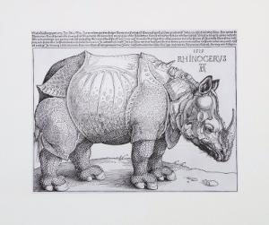 Rhinoceros, c.1515 by Albrecht Dürer