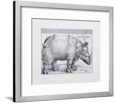 Rhinoceros, c.1515