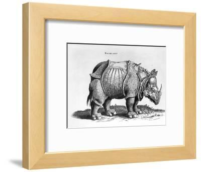 """Rhinocerous, No. 76 from """"Historia Animalium"""" by Conrad Gesner (1516-65) Published in July 1815"""