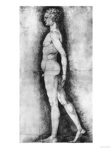 Study of Male Nude Seen in Profile, British Museum, London by Albrecht Dürer