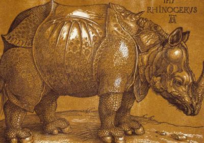 The Rhinoceros, 1515, Pen and Ink, Wash by Albrecht Dürer