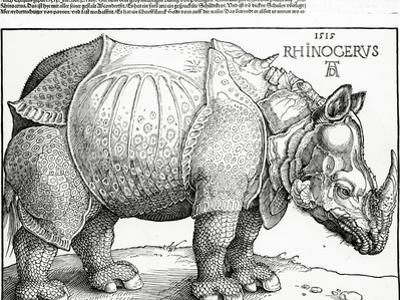 The Rhinoceros, 1515 (Woodcut)