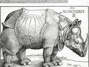 The Rhinoceros, 1515 (Woodcut) by Albrecht Dürer