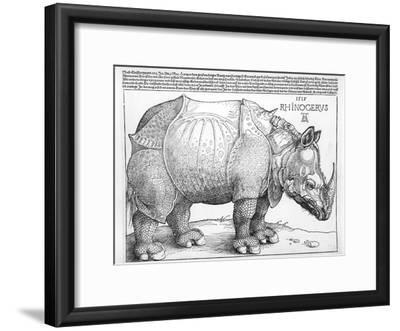 The Rhinoceros, 1515