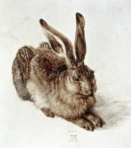 The Young Hare by Albrecht Dürer