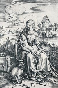 Virgin and Child with a Monkey, 1506 by Albrecht Dürer