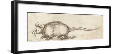 Mouse, C. 1480-1520
