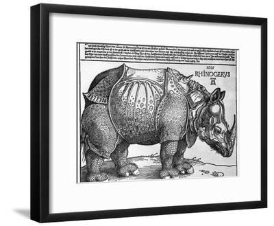 Rhinoceros, Print Given to Maximilian I by the King of Lisbon, 1515